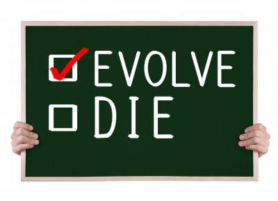 Evolutionary web design plans